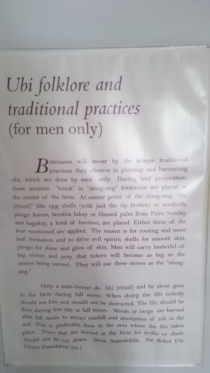 tagbilaran-bohol-national-museum-ube-exhibit-information-sign