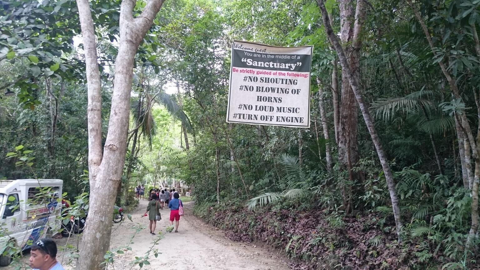 tarsier-sanctuary-road-to-sanctuary